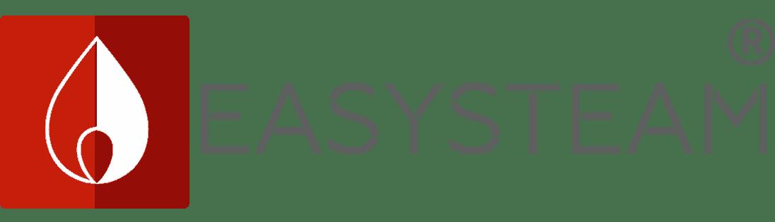 Компания ИзиСтим